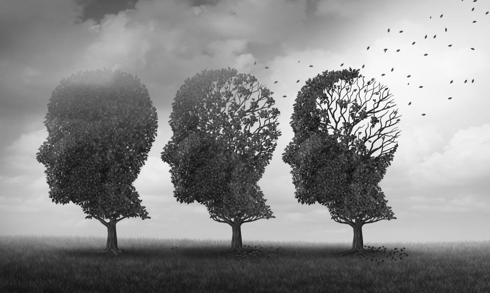 Где находятся тела вставочных нейронов