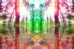 Измененное состояние сознания: что такое. Виды, теория и практика